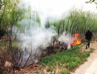 唐山一男子酒后火烧绿化