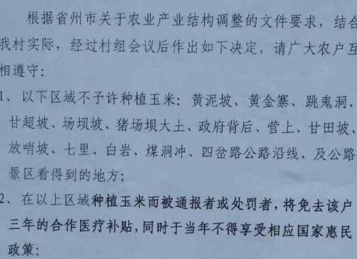 """贵州一村为调整种植结构""""种玉米将被罚"""""""